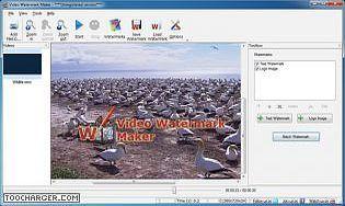 Video Watermark Software