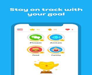 Duolingo Education