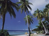 Ile tropicale Fonds d'écran