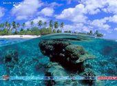 Pacifique Sud Fonds d'écran