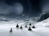Nuit au clair de lune Fonds d'écran