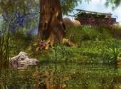 Lac de printemps  Fonds d'écran