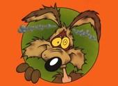 Coyote Fonds d'écran
