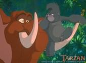 Tarzan Fonds d'écran