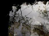 Des ronds dans l'eau Fonds d'écran