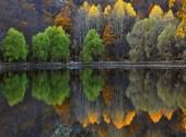 Automne sur le lac Fonds d'écran