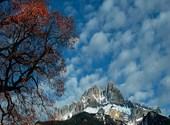 Fin d'automne Photos