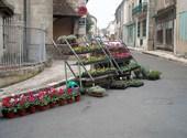 Castillonès Photos