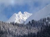 Un bel hiver Photos