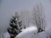 Brouillard Photos
