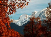 Un bel automne Photos