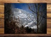 Hivernal Photos