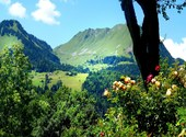 Alpes printanières Photos