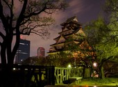 Le château d'Osaka Photos