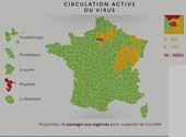 Carte de circulation du Virus en France Dessins & Arts divers